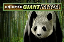 Untamed Giant Panda slot review and free play
