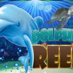 img_slot_DOLPHIN-REEF_239x180
