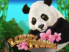 Lucky Panda Slot Review