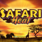 img_slot_SafariHeat